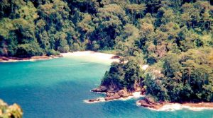 Green Bay Teluk Hijau Beach Banyuwangi